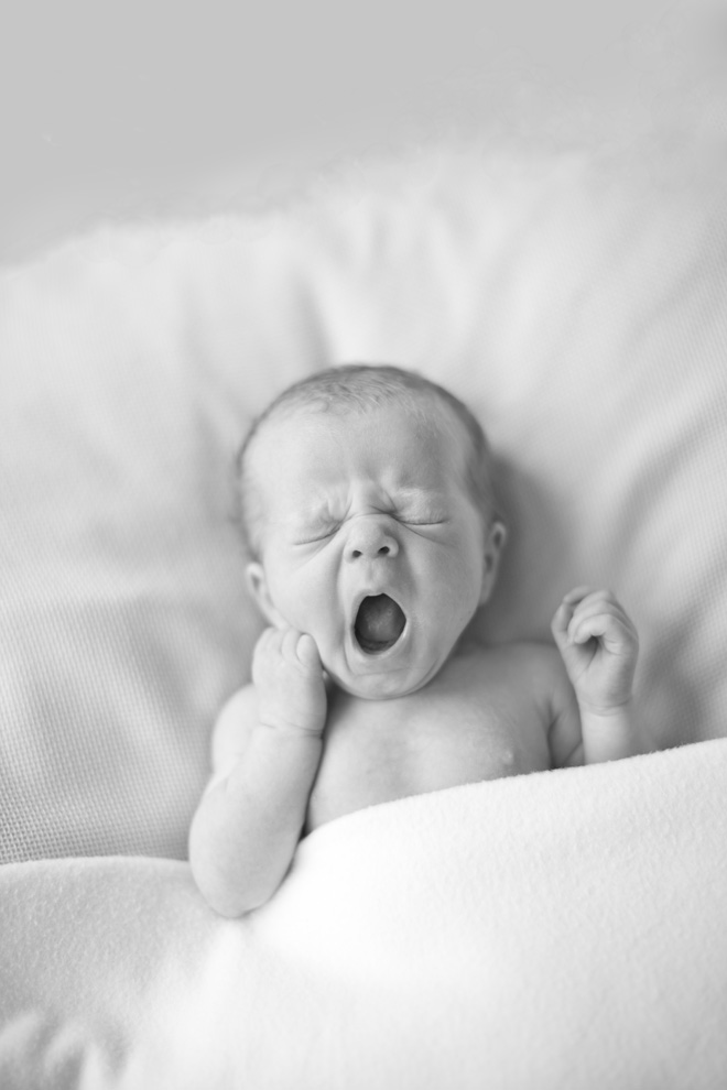 Fine Art Newborn Photographer